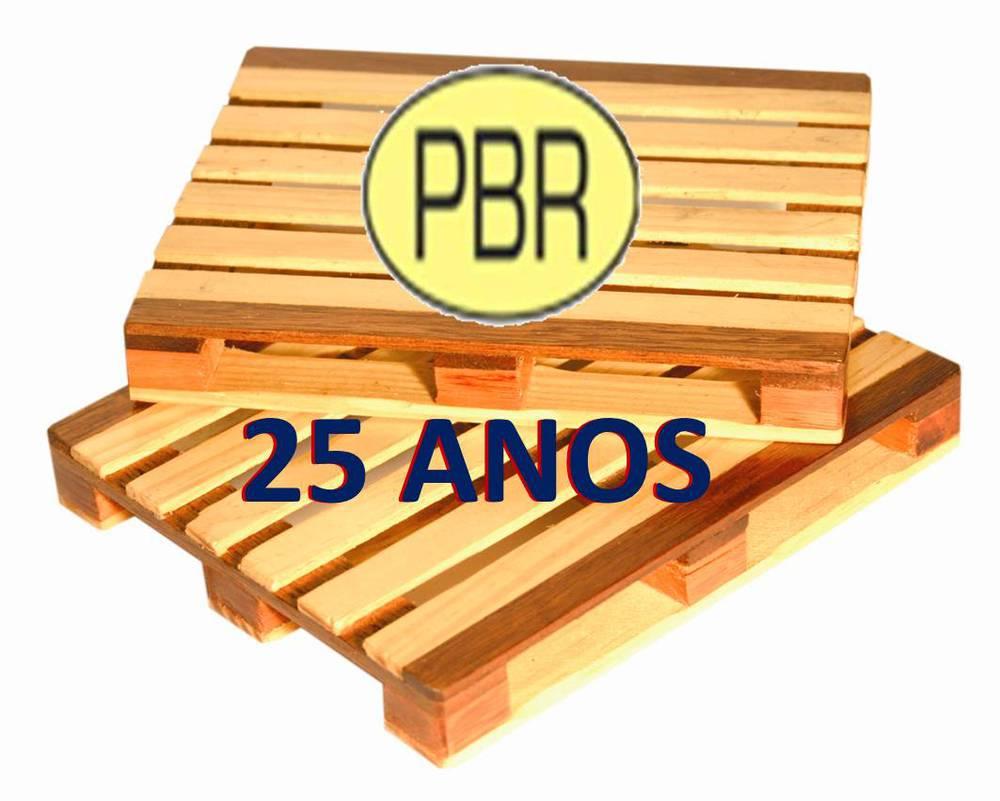 PBR 25 ANOS